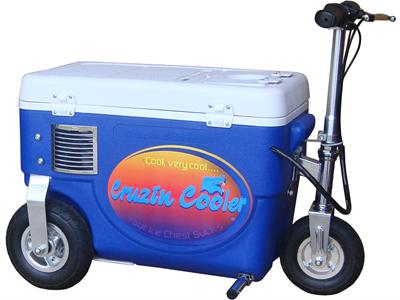 Cooler Scooter 500w Blue